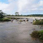 so friedlich kommt der Iguazu angeschwommen