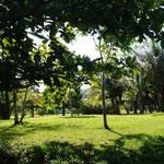 großer Hünerhof