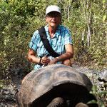die Landschildkröte guckt schon munterer