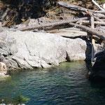 hier springt ein bekloppter ins Wasser - strengstens verboten!