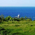 Unser Ausblick auf die Ostsee
