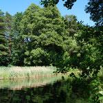 Am Finow-Kanal