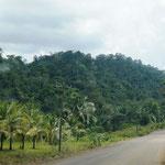 Die Landschaft wechselt nun mit Hügeln und Urwald