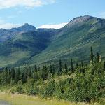 auf dem Weg zum Denali-NPark - wieder beeindruckende Berge