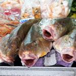 trotzdem geht es in den Hafen - und hier gibt es Frischfisch