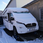 Knöuschen im Schnee