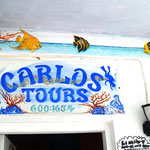 Wir machen mit Carlos den Ausflug