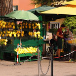 Am Eingang sehen wir diese riesen Lemonen