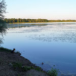 ein See ist auch hier