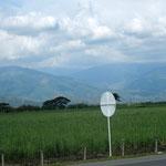 weite Landschaft, im Hintergrund die Cordillera Central