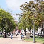 schón angelegte Parks