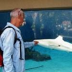 Wir schauen schon mal, was es im Pazifischen Ozean für Tierchen gibt!