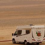 Caracho in der Wüste