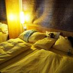 die gemütlichen Betten