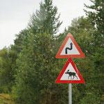 Am Morgen - auf der Fahrt sehen wir oft dieses Schild