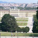 der Vormittag führt uns zum Schloss Schönbrunn