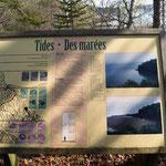 Erklärung des Tide Hups