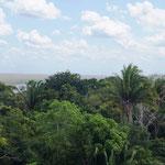 und hat ein fantastischen Ausblick über den Dschungel