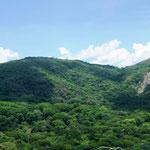 grünes Costa Rica