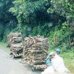 so wird das Holz in´s Dorf transportiert!