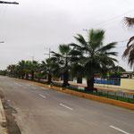 im Ort dann eine 4-spurige Straße mit Palmen-Mitte
