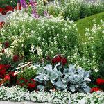 und Parks mit Blumenpracht