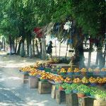 auf der Fahrt - am Straßenrand immer wieder Obsthändler