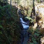 die liile Qualicum Falls