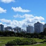 bis auf das Villenviertel, wo wir stehen, besteht die Stadt fast nur aus Hochhäusern