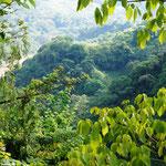 Aussicht auf den Rio Cauca aus unserem Zimmer