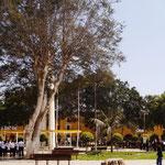 der Plaza del Armaz in Ica