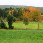 ... auch der Herbst hat was für sich