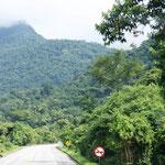 Brasilien ist grün ohne Ende