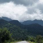 Regenwald an der Küste entlang