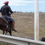der treibt seine Pferde durch die Gegend