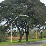 Einfahrt in Ita Itabé - ein Schlammloch nach dieser Strasse
