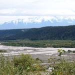 typische Flusslandschaft