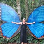 auch ein hübscher Schmetterling?