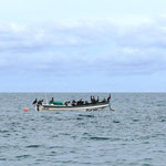 ein Boot voll Pelikane (lange nicht mehr gesehen!)