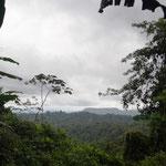 zwischendurch auch mal ein Ausblick auf den Regenwald