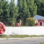 die Stadt der Kirschen - noch nicht ganz reif