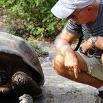 Ms. Turtle - zieht vor Schreck den Kopf ein