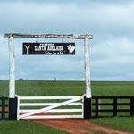 viele Eingangstore zu den Fazendas - die selbst sind oft Kilometerweit entfernt