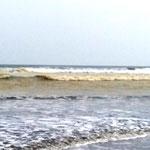 an einigen Strandabschnitten kommt so ein gelber Dreck an (was ist das - sieht aus wie PiPi)