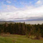 erster Ausblick im Fundy Park