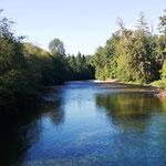 Fluß am Camping mit vielen Fischen