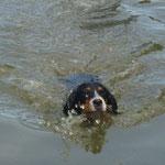 Ich kann ja schwimmen