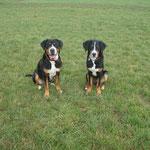 Bonnie und Bud