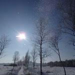 Schönramer Filz im Winter
