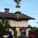 Der Maibaum steht